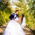 Kristine&Roberts wedding 2015 845